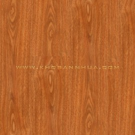 Sàn nhựa vân gỗ Railflex RF306