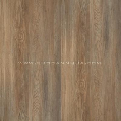 Sàn nhựa vân gỗ Galaxy MSC 5022