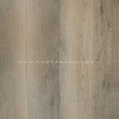 Sàn nhựa vân gỗ Galaxy MSC 5027